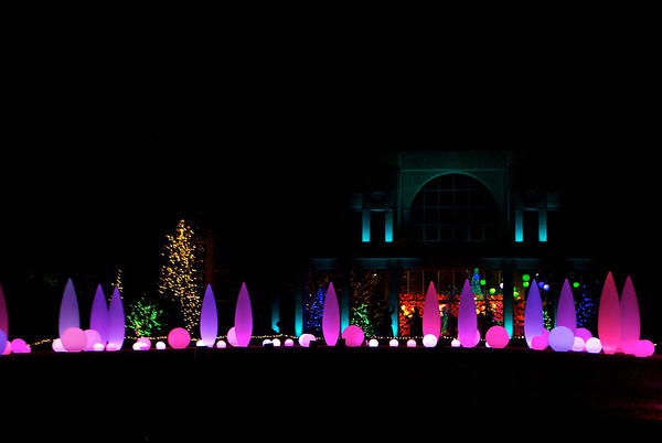 Holiday Lights Botanical Garden
