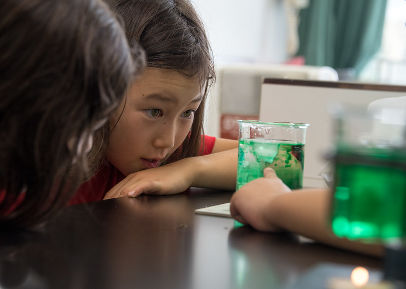 Gr. 2 Science Experiment-untitled shoot-YIS_6900-2018-19.jpg