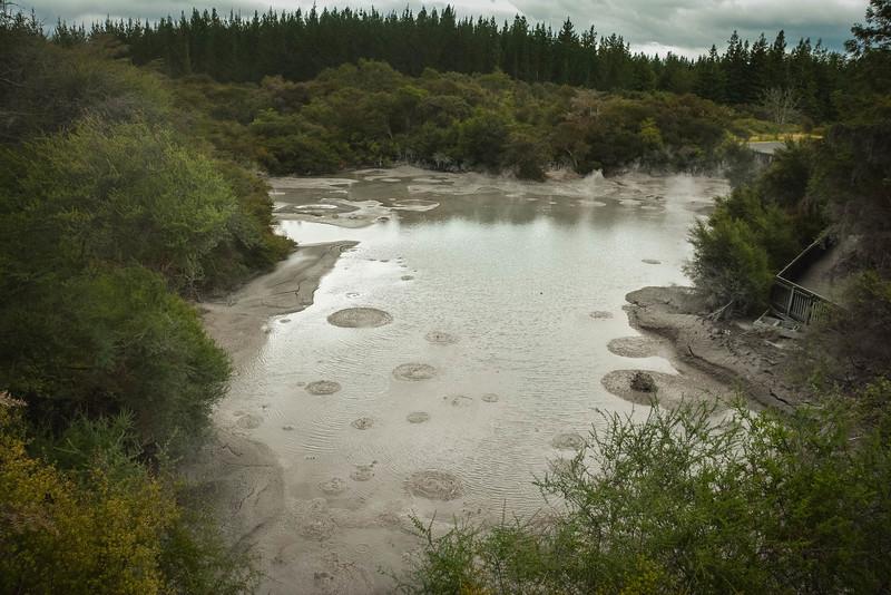 Rotorua-106.jpg