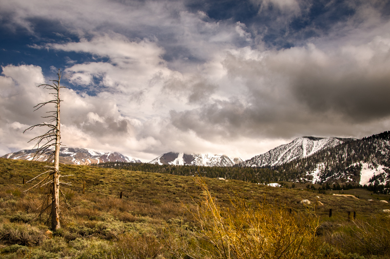 May 31 - Late afternoon threatening clouds over the Sherwins, Mammoth Lakes, CA.jpg