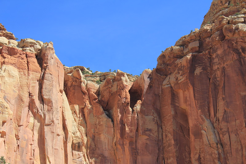 20170618-083 - Capitol Reef National Park - Scenic Drive.JPG