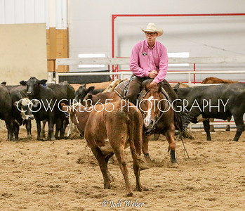Cutting Horse Shows and Clinics