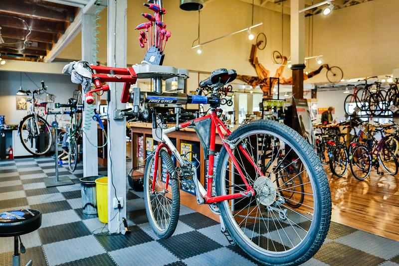 BikeCommuter-0825.jpg