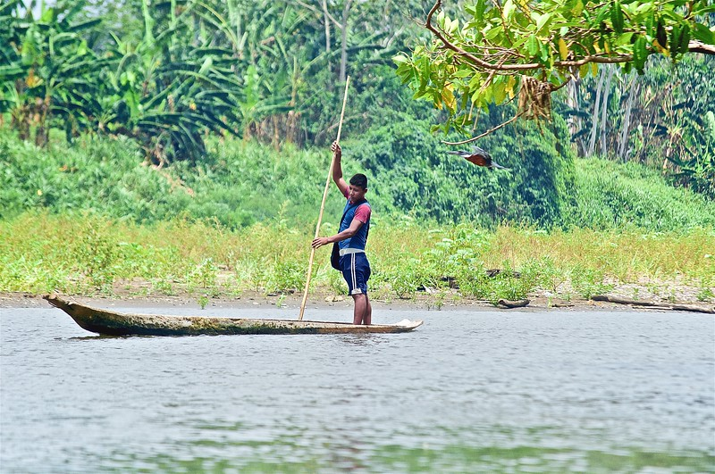 Indigenous Wounaan Man Navigating the Rio Tuira - Darien, Panama