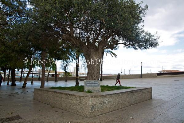 CEUTA (Spain). Carlos Chochron memorial (3.2016)