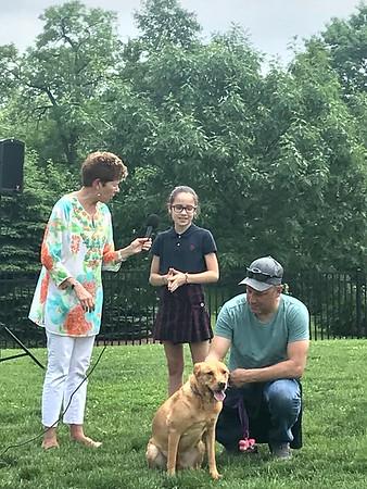 Dog Show 2018