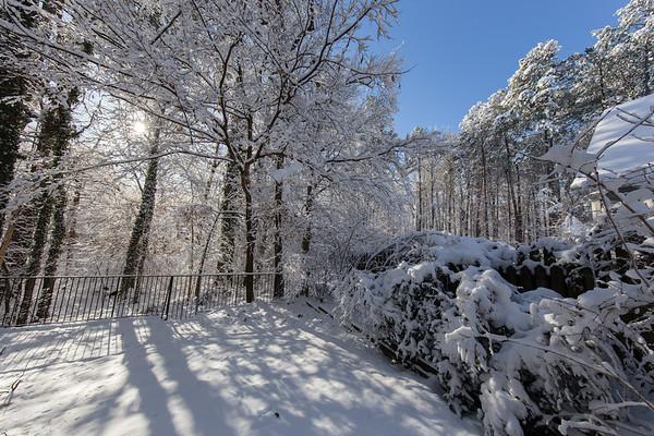 Snow, January 2018