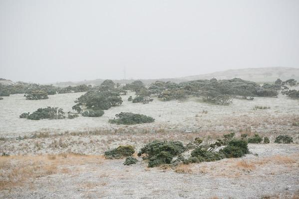 Snow Carrick Hills