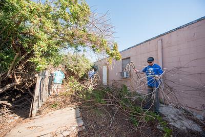 GivingTuesday - Harvey PortA Clean Up