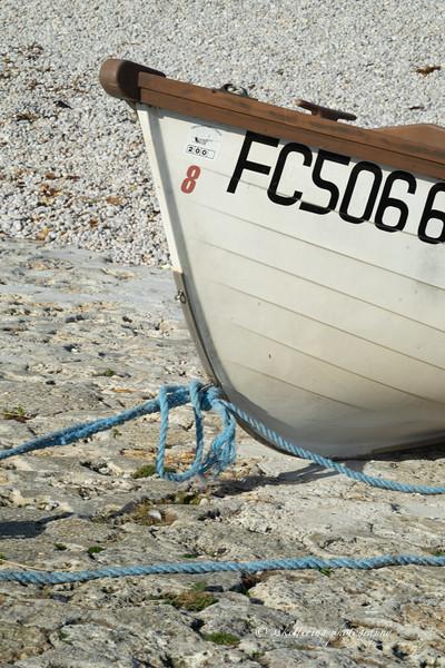 france19-6789.jpg