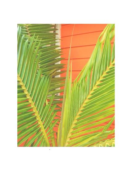 IMG_0474 (1)Orange Cottage blank.jpg