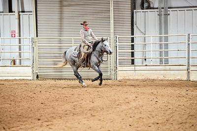VRH Open Ranch Reining