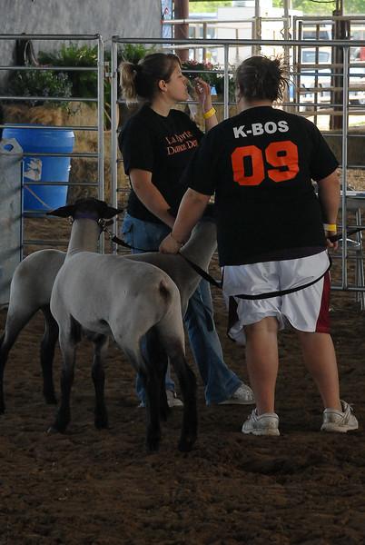 2008 La Porte Livestock Show  04-07-08 Ag. Mech., Home Ec.