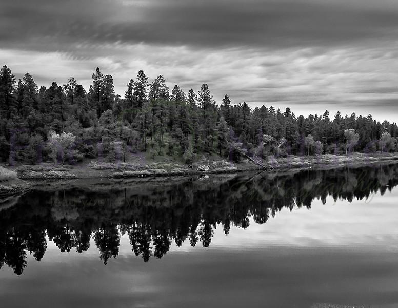Black & White/Monochrome