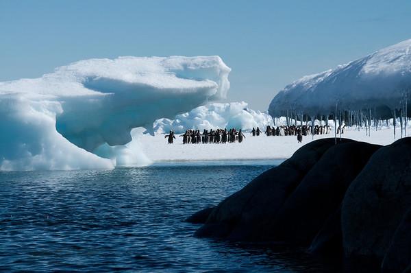 Antarctica, Dec 2012