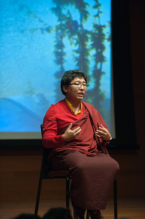 Tsoknyi Rinpoche, Post-screening discussion of WHEN THE IRON BIRD FLIES