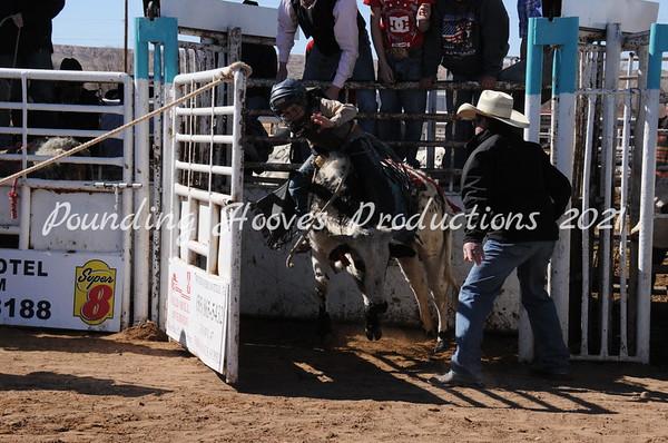 2-23-13 Sat Steers