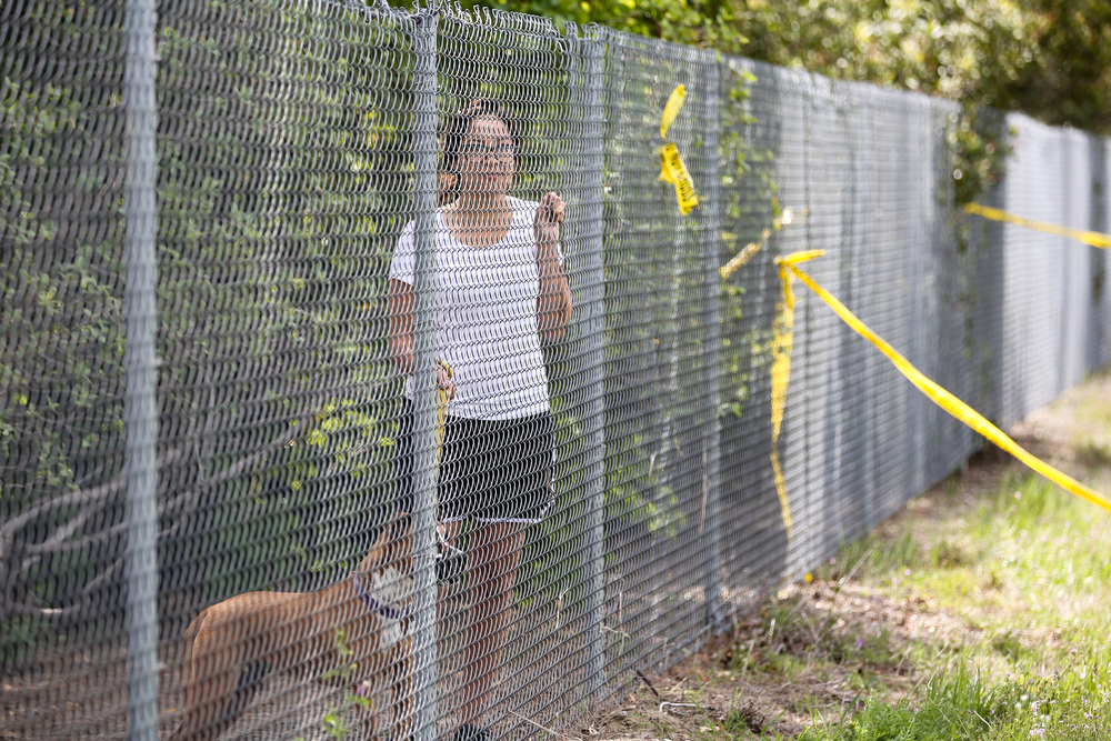 Description of . Amanda Martinez and her dog Taffy watch workers clear the scene of Thursday's deadly crash on April 11, 2014  in Orland, California. Ten people were killed and dozens injured, including four still in critical condition, after a FedEx truck collided with a bus of high school students on Interstate 5 yesterday. The students were on their way to visit Humboldt State University in Northern California. (Photo by Elijah Nouvelage/Getty Images)