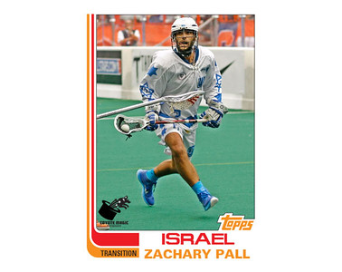 Israel Zachary Pall (WILC2015)