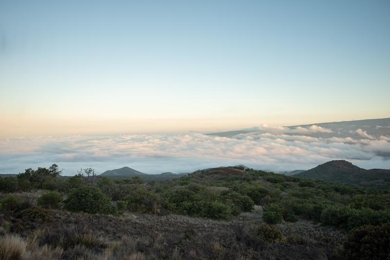 Hawaii2019-312.jpg