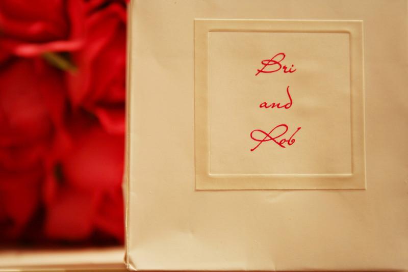 Bri Rob Wedding 2008 1191.JPG