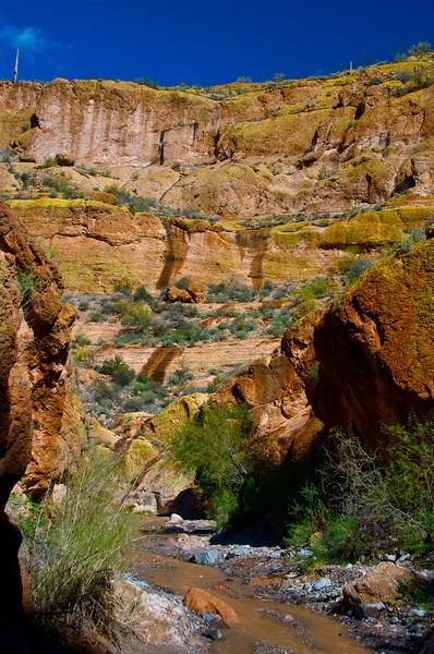 Box Canyon, AZ7.jpg