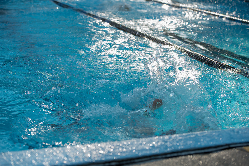 lcs_swimming_kevkramerphoto-134.jpg