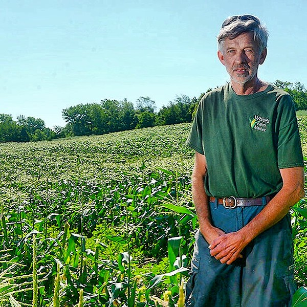 [Jack Haley/Messenger Post Media]Chip White of White's Farm Market stands in one of several fields in Bloomfield that the farm has planted for this years consumption of sweet corn.