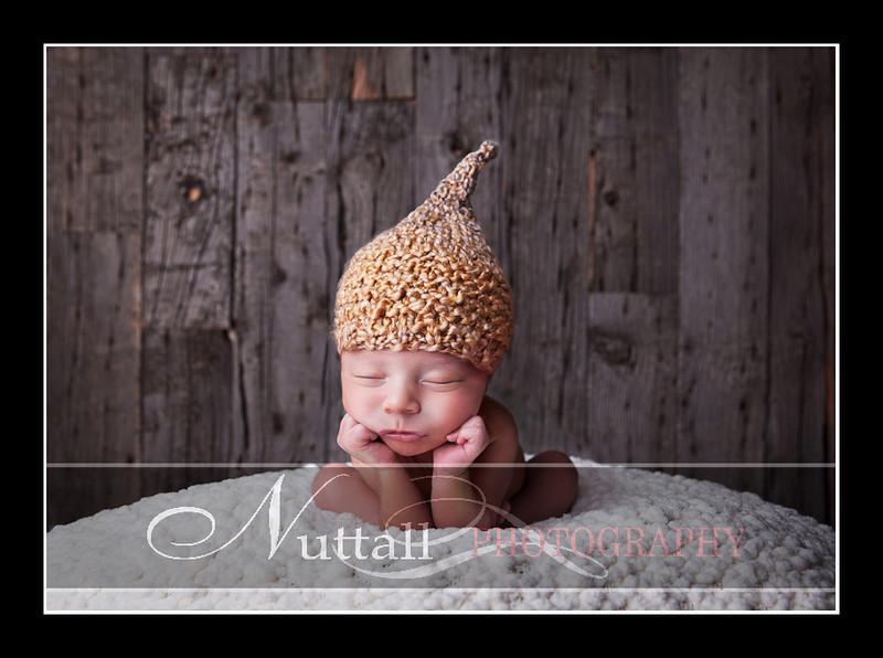 Noah Newborn 51.jpg