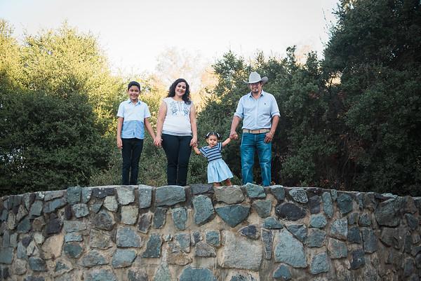 Villegas Family 2020