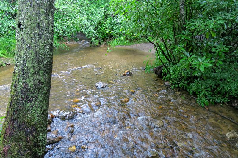 South Fork Mills River -- 3,280'
