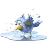 pool-bird-icon.png