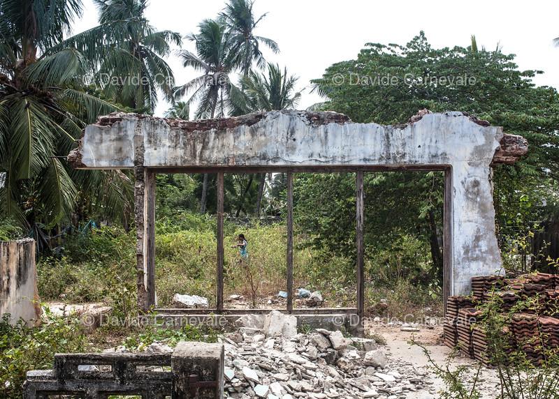 srilanka (57 di 74).jpg