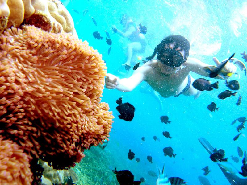 Snorkeling - Will (1).jpg