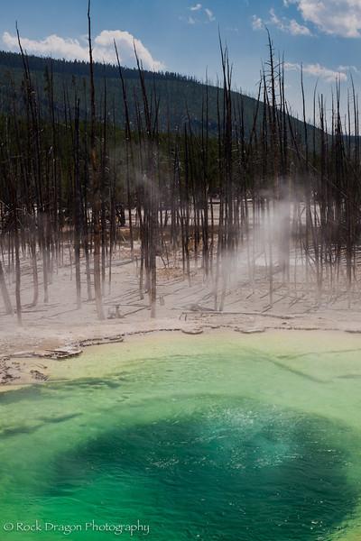 Yellowstone-62.jpg
