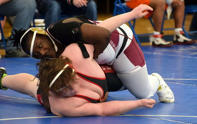 HS Sports - Division 2 Wrestling Districts at Adrian