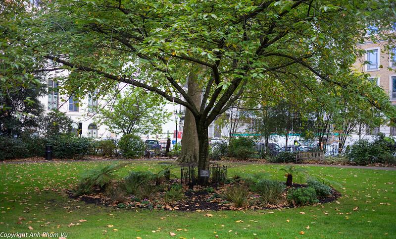 London October 2014 017.jpg