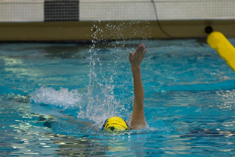 swimming-110109-124.jpg