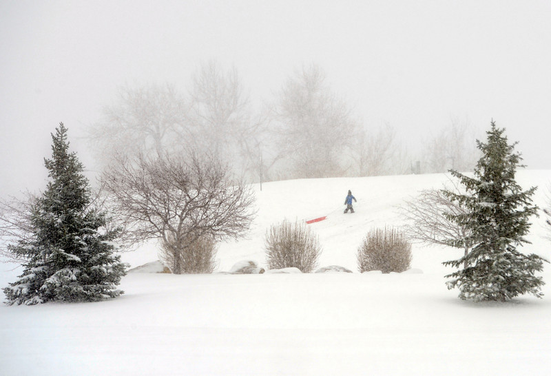 . Seven-year-old Lincoln Gregersen pulls his sled to the top of the hill in Arvada, April 09, 2013. A winter storm has blown into Colorado, with strong winds and below freezing temperatures creating blizzard-like conditions at times. (Photo By RJ Sangosti/The Denver Post)