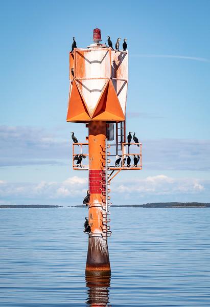 Cormorants on beacon in the Sea
