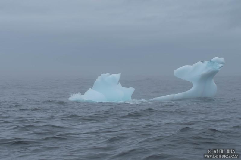 Whale's Tail Ice     Photography Wayne Heim