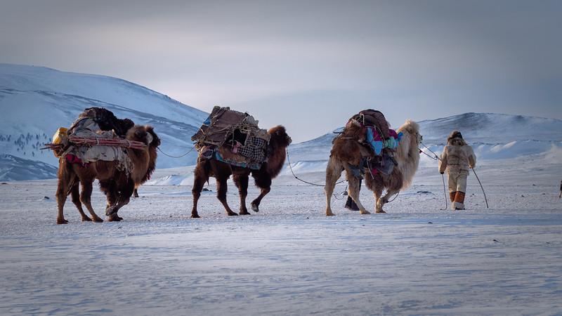 Mongolia - 2020 -21.jpg