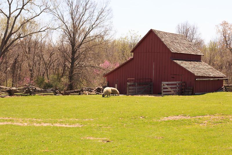 2014_04_18 Missouri Town 1855 020.jpg