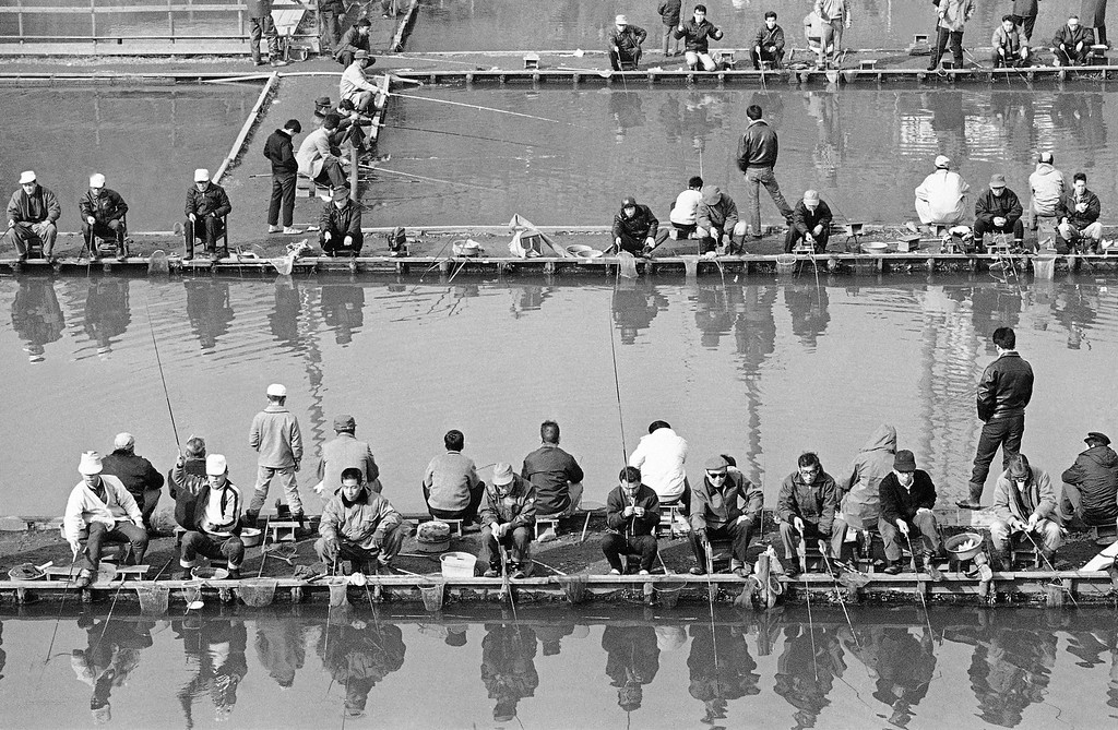 . None of that pre-dawn start and shivering in the ocean wind for these Japanese fishermen, with lines out in a Tokyo pond for trout on Sunday, Jan. 24, 1966, carp and eels on a sunny winter. The pond is one of the Tsuribori, ponds which are kept stocked for anglers who rent rods to do their fishing in the heart of the city. A number of such ponds have been developed in Tokyo. (AP Photo)