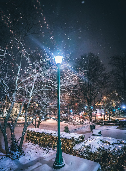 Dec snow (1 of 1)-7.jpg