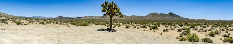 High Desert and Lone Pine vistor center