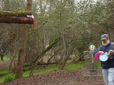 Disc Golf - Shady Oaks 01-12-2011