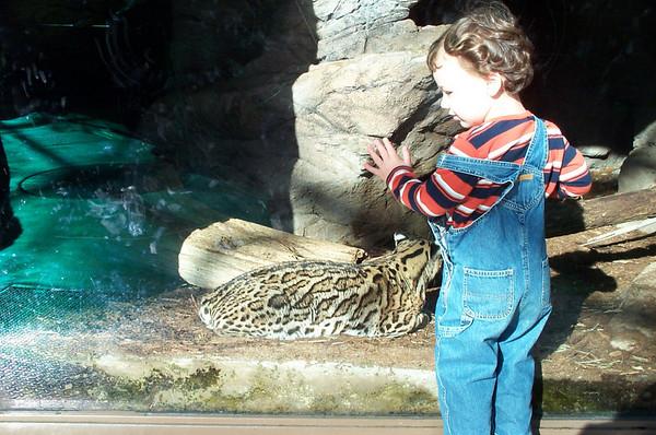 NC Zoo 111704