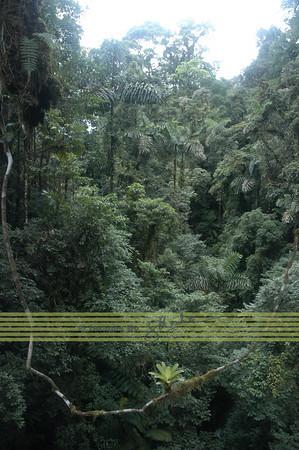 Costa Rica - Landscape