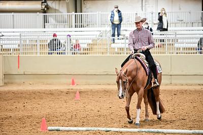 Jr. Western Riding